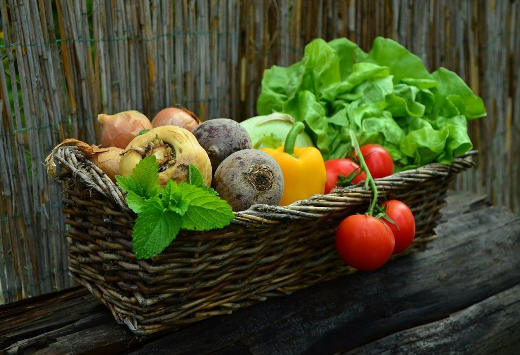 Basket of freshly grown vegetables