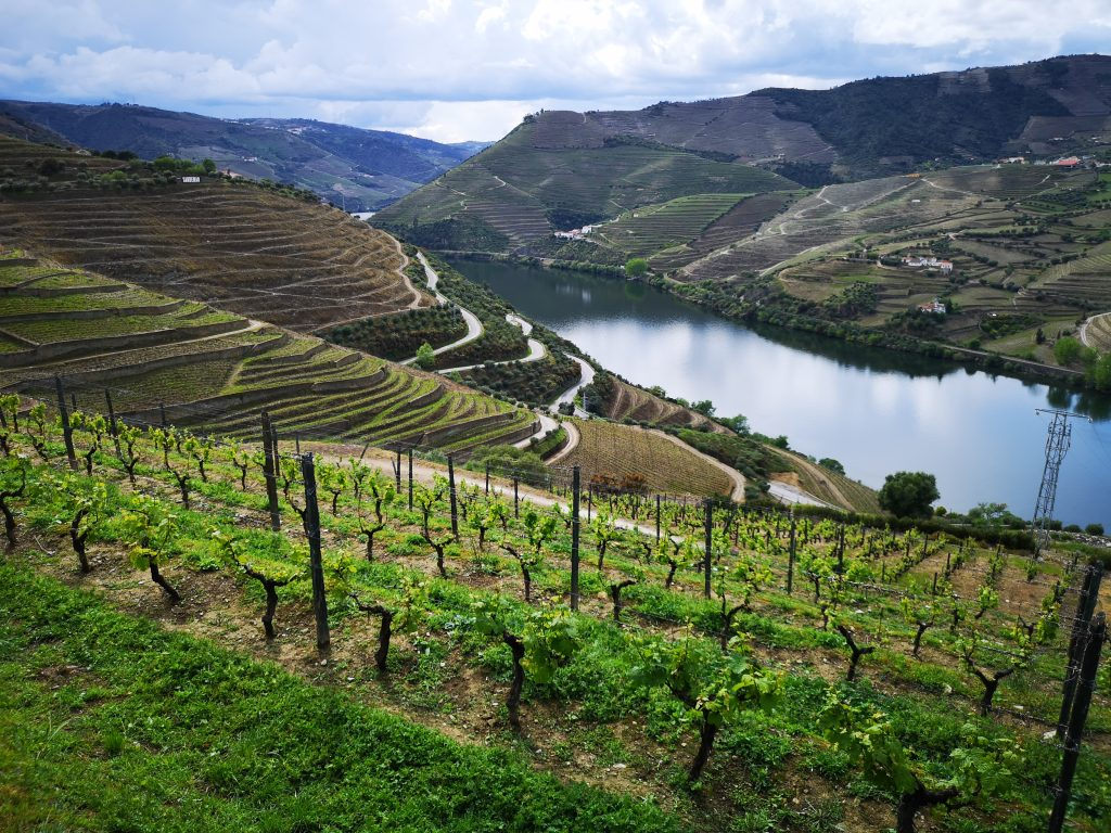 View of Douro Valley